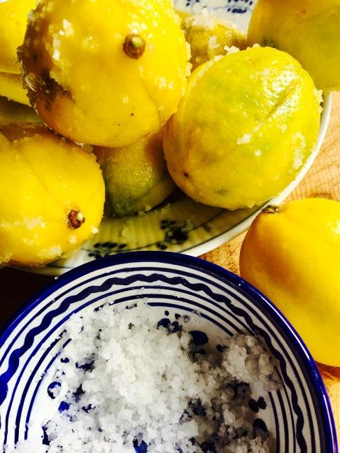 Zitronen in Salz1