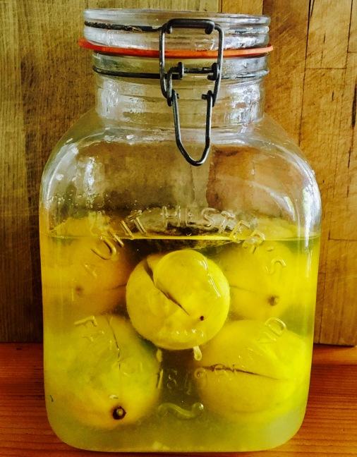 Zitronen in Salz2