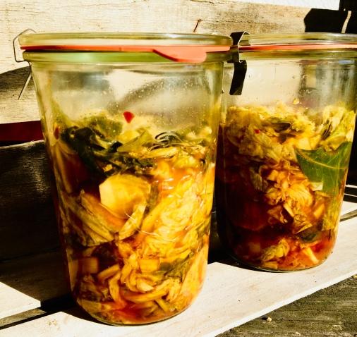 Wirsing-Kimchi ohne Knoblauch